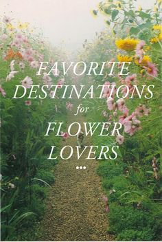 Top destinations for flower lovers. Have your favorites? Add them to the list!