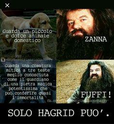 Hagrid is my best friend and shish a tutti Harry Potter Comics, Harry Potter Tumblr, Harry Potter Anime, Harry Potter Books, Harry Potter Love, Harry Potter Fandom, Harry Potter World, Harry Potter Memes, Saga