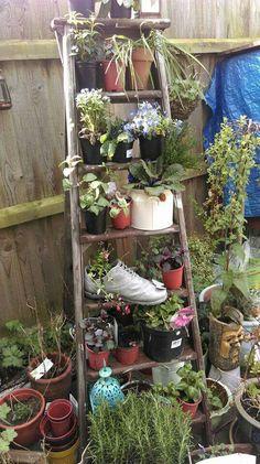 Garden Crafts, Garden Projects, Garden Art, Garden Design, Garden Ladder, Garden Junk, Garden Front Of House, Lawn And Garden, Container Flowers