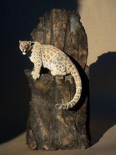 Snow Leopard by Miguel Borja Bersabe