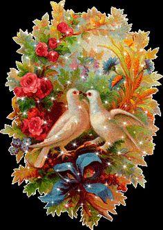 Beautiful Love Pictures, Beautiful Gif, Beautiful Birds, Jesus Pictures, Gif Pictures, Gif Animé, Animated Gif, Gif Bonito, Bird Gif