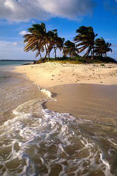 Caribbean Island   iPhone Wallpaper