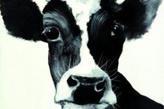 Unser Liebling des Tages ist die sanft blickende Kuh Lucy, gemalt von Christel Keller. Das schöne Tier ist auf Echtleinen gedruckt und auf Keilrahmen gespannt, erhältlich in verschiedenen Größen. http://landhaus-look.de/bilder-und-schilder