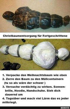 Christbaumentsorgung für Fortgeschrittene..