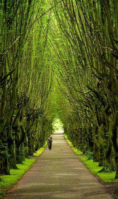 Tivoli Gardens Copenhagen, Denmark. #Travel