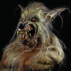 This Studio Werewolf Halloween Costume is one of the best in the business. Description from thehorrordome.com. I searched for this on bing.com/images