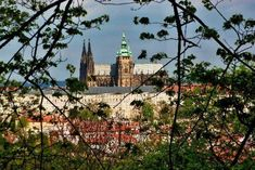 Cathedral, Mansions, House Styles, Building, Travel, Viajes, Manor Houses, Villas, Buildings