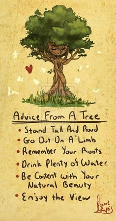 ♥ Advice from a tree! ♥ #wisewords