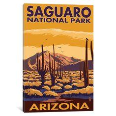 iCanvas 'U.S. National Park Service Series: Saguaro National Park