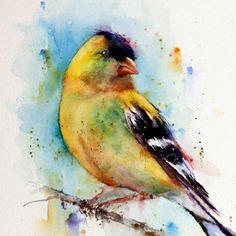 GOLFINCH Watercolor Bird Print by Dean Crouser door DeanCrouserArt