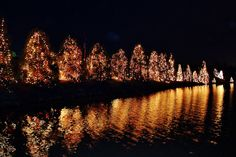 McAdenville, NC - Christmastown, USA