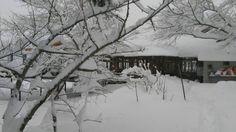 Çamlıyayla ve Gülek Kar Fotoğrafları (Karışık) | Sayfa 15