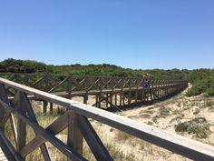 마요르카섬 2일째 되는날은 Valentin Playa de Muro숙소 건너편에 있는Platja de Muro 해변을 설명 드...