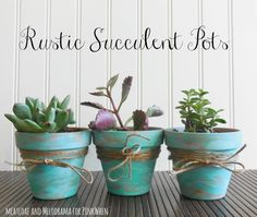 Best Country Crafts For The Home - DIY Rustic Succulent Pots - Cool and Easy DIY Craft Projects for Home Decor, Dollar Store Gifts, Furniture and Kitchen Accessories - Creative Wall Art Ideas, Rustic and Farmhouse Looks, Shabby Chic and Vintage Decor To M Decorated Flower Pots, Painted Flower Pots, Painted Pots, Painted Pebbles, Fleurs Diy, Terracotta Flower Pots, Succulent Gifts, Clay Pot Crafts, Country Crafts