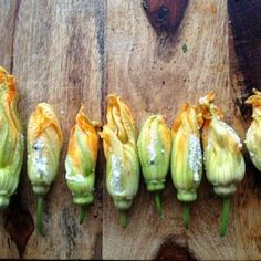 Fresh Chevre Stuffed Squash Blossoms - Or stuff with sautéd mushroom and onion or garlic, greens, herbs, corn meal. Sauted Mushrooms And Onions, Mushroom And Onions, Clean Recipes, Raw Food Recipes, Gluten Free Recipes, How To Make Cheese, Food To Make, Stuffed Squash Blossoms, Gluten Free Living