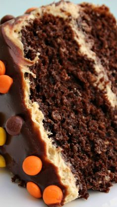 Double Chocolate Peanut Butter Cake ~ It is the ultimate peanut butter chocolate cake... Two layers of moist chocolate cake with a peanut butter buttercream and topped off with a chocolate ganache.