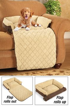 For when the cat takes the spot and you gotta roll out the extra fabric for the pooch Pet Couch Bed with Fold-Out Pad Couch Pet Bed, Pet Beds, Dog Bed, Doggie Beds, Sofa, Dog School, Dog Furniture, Dog Rooms, Dog Blanket