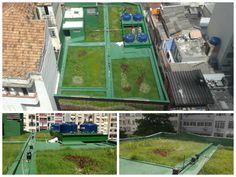 telhado verde - loja verde zona sul