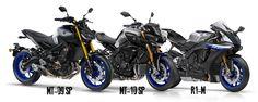 Ensaio Yamaha MT-09 SP - Uma versão especial para 2018 - MotoSport - MotoSport