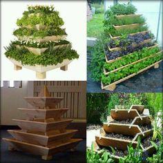 Herb Garden - Aquaponics
