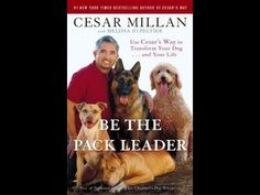 How to train your dog by Cesar Millan - YouTube