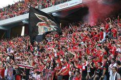 Estádio Municipal de Aveiro, época2013/2014, adeptos Benfiquistas lotaram os 30 mil lugares disponíveis. Arouca 0, Benfica 2 ( Rodrigo e Gaitán)