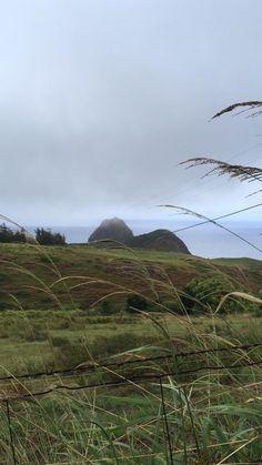 #ECOHOTELS #SWD #GREEN2STAY MAUI COAST HOTEL  Who's ready for a Hawaiian adventure?! http://www.green2stay.com/usa-eco-hotels