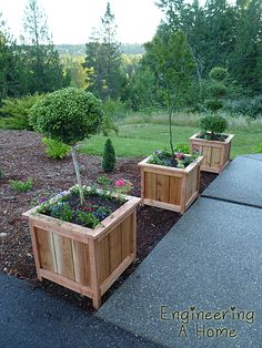 Very cute planter boxes for dwarf fruit trees or topiary. These were made with cedar, which will last a long time but you could construct them from pallet lumber for an affordable alternative.