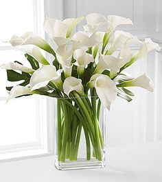 cala lillies - Google Search