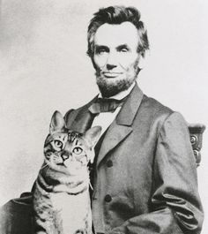 Abraham Lincoln with his cat Tabby Big Cats, Cats And Kittens, Cute Cats, Funny Cats, Celebrities With Cats, Celebs, Men With Cats, Gatos Cool, Tv Movie