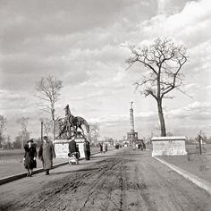 Berlin - Tiergarten 1950 - Ernst Hahn/Signalberg GmbH