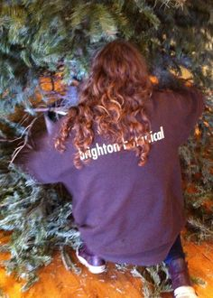 Brighton Botanical Interior & Exterior Landscaping, Christmas Tree Hire