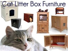 Get the cat litter box furniture  This would be pretty easy to make myself with some cheap furniture from a second hand shop
