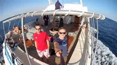 """Christmas Red Sea Diving aboard Blue O'Two's """"MV Blue Melody"""".  With the Discover UK Diving Dive Team..."""
