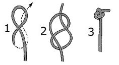 The Figure 8 knot