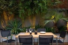 Decor of Contemporary Garden Decor Outdoor Bamboo Plants For Small Garden Design Using Modern - Simple design could make a remarkable adjustment on the who Terrace Garden Design, Tropical Garden Design, Small Garden Design, Balcony Garden, Rooftop Design, Tropical Gardens, Tropical Plants, Tropical Backyard, Corner Garden