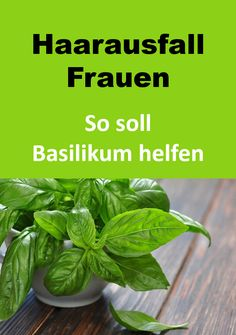 Basilikum bei Haarausfall - So einfach können Frauen dünnem Haar im Alter vorbeugen bruns courts femme homme mi long de cheveux color ideas women Hair Care, Diy Beauté, Rides Front, Hair Loss Women, Health Tips, The Cure, Beauty Hacks, Natural Hair Styles, Health Fitness