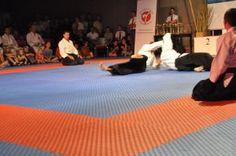 Aikidovorführung in Neuhofen / Krems im Rahmen des Karate Camps am 1. August 2015 - Kaeshiwaza (Gegentechnik)