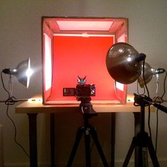 How to Create a Home Macro Photography Studio