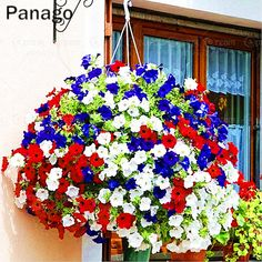 Hanging baskets in red, white & blue Surfinia Petunias Flowers Hanging Flower Baskets, Hanging Planters, Fall Planters, Petunia Hanging Baskets, Winter Hanging Baskets, Diy Hanging, Container Plants, Container Gardening, Succulent Containers
