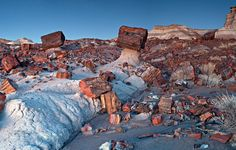 At Petrified Forest National Park, Arizona