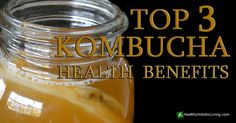 Have you tried Kombucha yet? Time to check out the Kombucha health benefits - this is some amazing stuff
