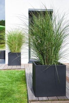 Flower Planters, Garden Planters, Indoor Garden, Flower Pots, Outdoor Gardens, Diy Garden, Wooden Terrace, Wooden Decks, Back Gardens