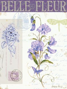 Purple sweet peas - dragonfly on writing with postmarks.