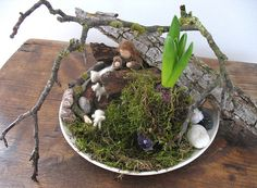 February ~ Root Children ~ Nature Table ~ This is the time of the root children. Slowly but surely one after the other is coming out of their secure underground home.