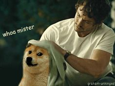 Because we got as obsessed with the cult of doge as Will Graham. | 51 Reasons 2013 Was The Best Year Ever To Be A Nerd