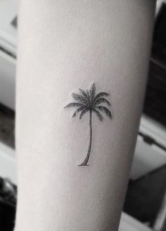 palm tree tattoo = the Carribean, tropical islands