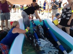 Short-Finned Pilot Whale Rescue Effort Labor Day Weekend 2012 #FWC Photo