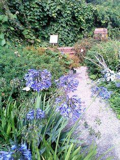 29 Impressive Landscape Gardening Courses In Cheshire U2013 Izvipi.com
