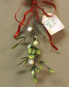 This will be the first Christmas I will be able to take advantage of mistletoe. YES!